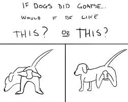 Goatse Meme - goatse if a dog wore pants know your meme