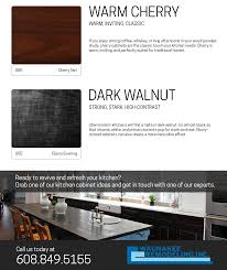 kitchen cabinet ideas infographic madison wisconsin
