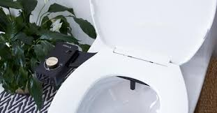 Why Have A Bidet All Your Bidet Questions Answered U2014 Tushy