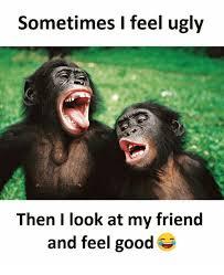 I Feel Good Meme - sometimes i feel ugly then i look at my friend and feel good ugly