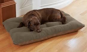 memory foam dog bed memory foam futon dog bed orvis