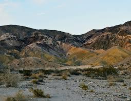 coyote mountains wikipedia