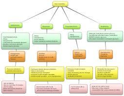 pharmacotherapeutics concept maps paul jeffrey a glance