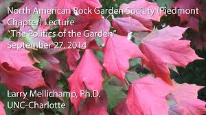 Rock Garden Society by Lesser Known Native Plants Of The Southeast