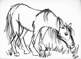 drawn farm animals sketch pencil and in color drawn farm animals
