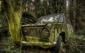 rusty car white background nature trees forest leaves car lada russian cars old car