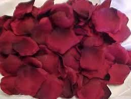 silk petals silk petals