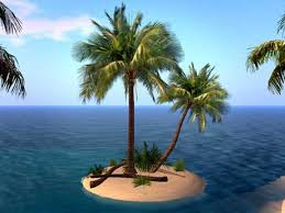 second marketplace palm tree island small island with