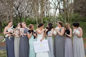 charlotte bride puppies place bouquets bridal party