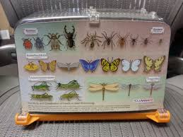 backyard safari bug habitat by summit products watch your bugs