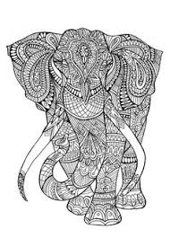 zebra coloring pages buscar google coloring pages