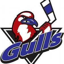 li gulls on congrats to the wee a 03 team on