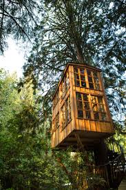 Cool Tree by 213 Best Tree Houses U0026 Playhouses Etc Images On Pinterest