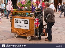 a trader selling bonsai trees from a mobile barrow in