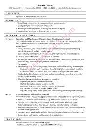 Bachelor Degree Resume Going Bovine Book Report Top Application Letter Editor Site For