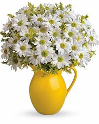 same day just because flowers send just because flowers same day and local delivery just because