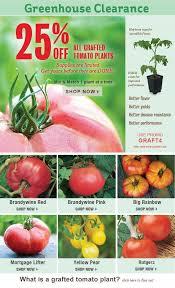222 best vegetable garden ideas images on pinterest garden ideas