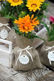Flower Pot Wedding Favors - 139 best plante marturii plant favors succulent favors natural