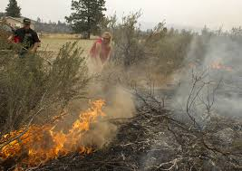 Wildfires In Bc July 2014 by Wildfire Spreading Rapidly In Okanogan County The Today File