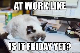Grumpy Cat Friday Meme - at work like is it friday yet grumpy cat at work meme generator