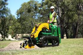 Dingo Hire Perth From 120 Per Day Pick Up And Delivery Offered