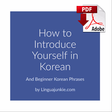 korean phrases how to introduce yourself in korean