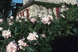 Garden Fertilizer Types - fertilizer requirements of peony bushes home guides sf gate
