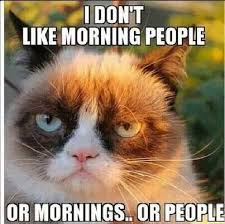 Not A Morning Person Meme - not a morning person don t like mornings or people thats an