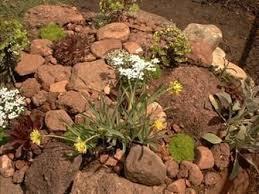 make a rock garden visihow