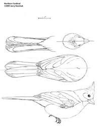 woodwork bird carving patterns uk plans pdf download free basic