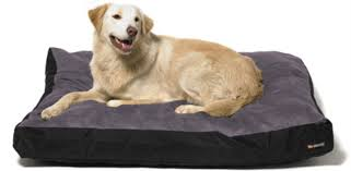 pet dog beds small to extra large dog beds cheap dog beds for