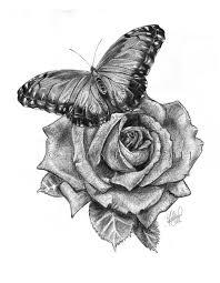 butterfly on by shivani11 on deviantart