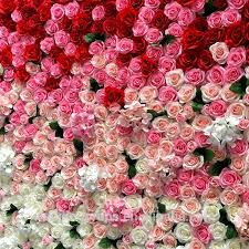 wall flowers flower wall wholesale flowers suppliers alibaba