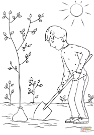 boy planting a tree coloring page free printable coloring pages