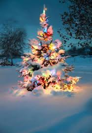 When Does The White House Get Decorated For Christmas 211 Best Holiday Images On Pinterest Snow Christmas Time And Nature