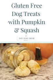 129 best diy dog mom blog images on pinterest dog mom diy dog