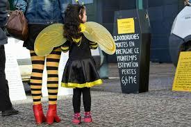 chambre d agriculture ni re abeilles en bretagne un convoi de ruches mortes pour dénoncer l