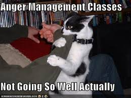 in a mad mad mad mad world anger management classes