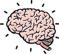 brain clipart for kids clipart bay