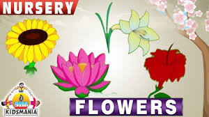 nursery flowers educational videos for kids teach your kids