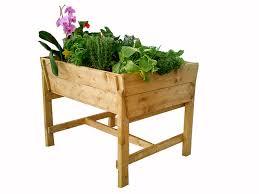 gem se pflanzen balkon die eigene ernte auf balkon oder terrasse unser neues pflanzen