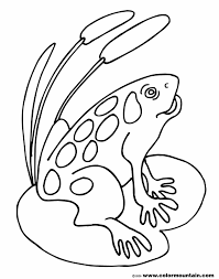 coloring pages animals printable frog coloring page images tree
