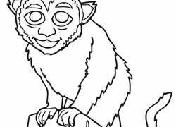 monkey coloring pages u0026 printables education