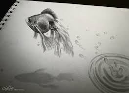 drawing fish 3d by alaadin on deviantart