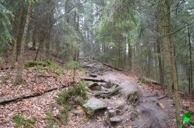 Wetter Bad Schandau 14 Tage Sächsische Schweiz Tag 2 Haentzschelstiege Carolafelsen Wilde