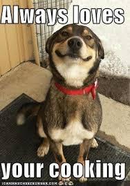 Dog Cooking Meme - image 191019 good dog greg know your meme