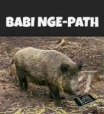 Meme Babi - memes babi ngepet memes pics 2018