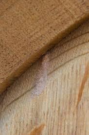 Powder Post Beetles In Hardwood Floors - don u0027t be such a bore naggiar vineyards naggiar vineyards