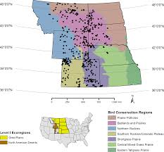 North Western United States Map by A Large Scale Perspective For Managing Prairie Avifauna