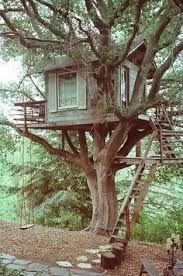 Cool Tree Houses Mount Cotton Playground Backyard Trees Tree Houses And Brisbane